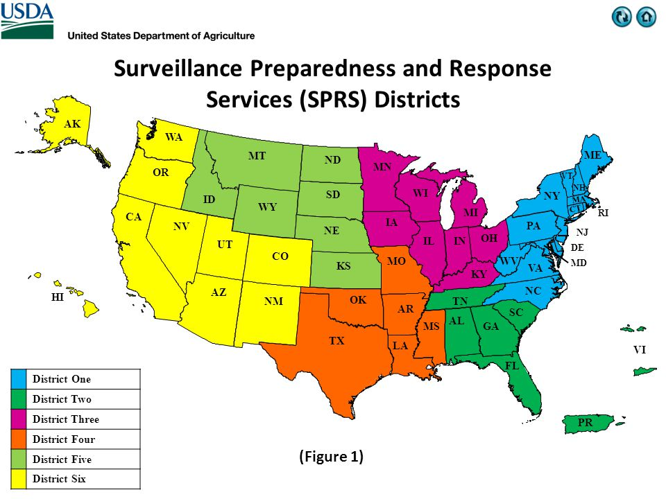 WY WV WI WA VT VI VA UT TX TN SD SC RI PR PA OR OK OH NY NV NM NJ NH NE ND NC MT MS MO MN MI ME MD MA LA KY KS INIL ID IA HI GA FL DE CT CO CA AZ AR AK AL Surveillance Preparedness and Response Services (SPRS) Districts District One District Two District Three District Four District Five District Six (Figure 1)