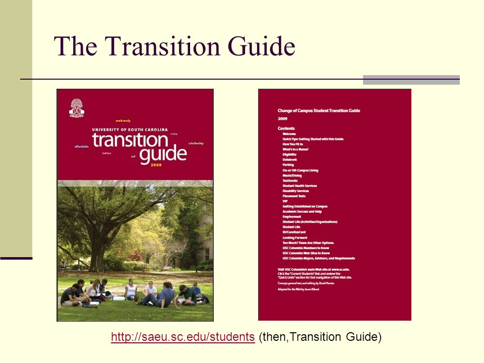 The Transition Guide   (then,Transition Guide)