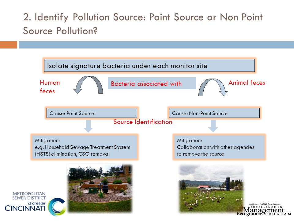 2. Identify Pollution Source: Point Source or Non Point Source Pollution? Isolate signature bacteria under each monitor site Bacteria associated with