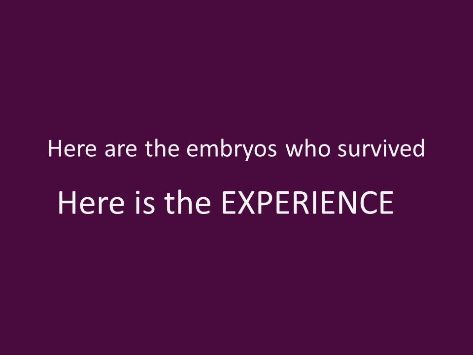 Here are the embryos who survived Here is the EXPERIENCE