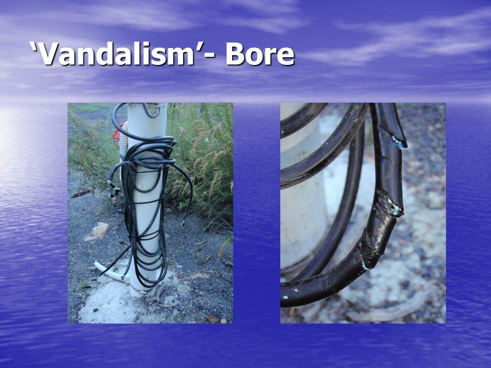'Vandalism'- Bore