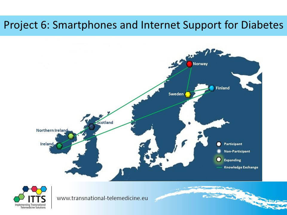 www.transnational-telemedicine.eu Project 6: Smartphones and Internet Support for Diabetes