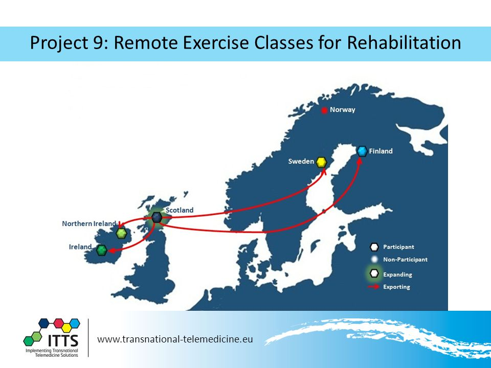 www.transnational-telemedicine.eu Project 9: Remote Exercise Classes for Rehabilitation