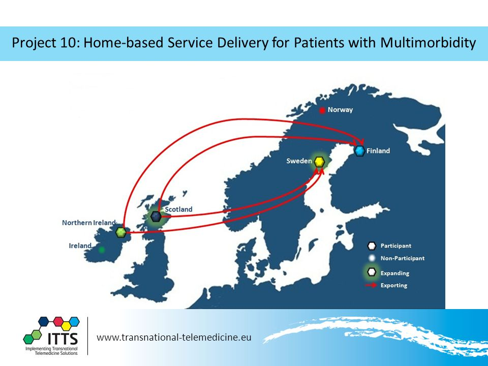 www.transnational-telemedicine.eu Project 10: Home-based Service Delivery for Patients with Multimorbidity