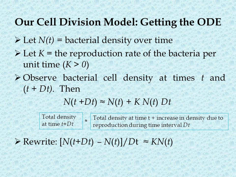 Our Cell Division Model: Getting the ODE  Let N(t) = bacterial density over time  Let K = the reproduction rate of the bacteria per unit time ( K >