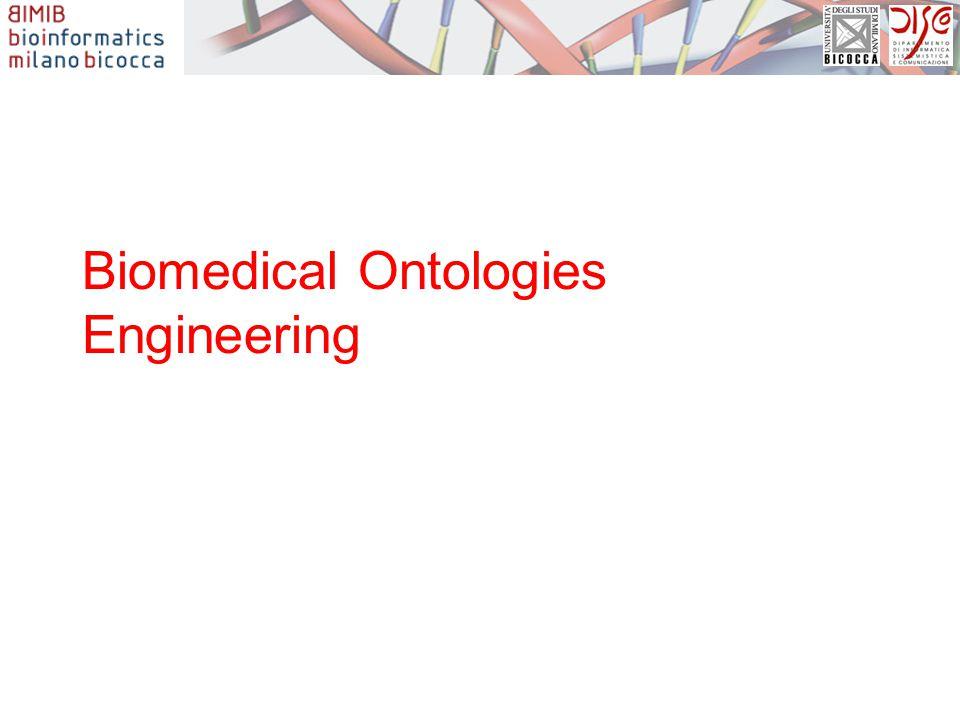Biomedical Ontologies Engineering