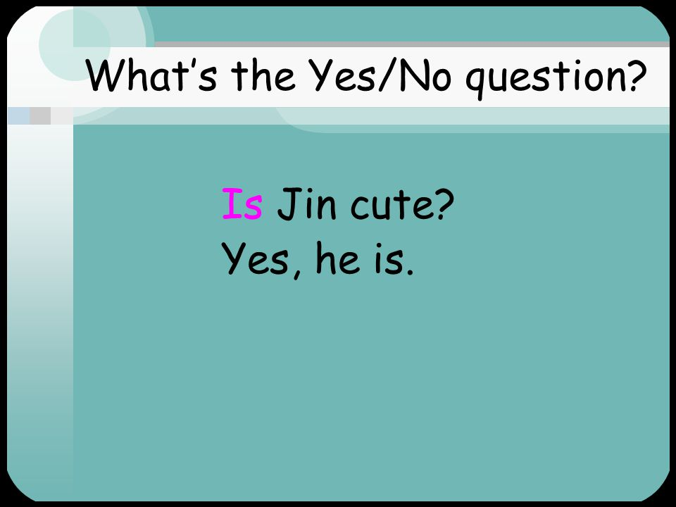 What's the Yes/No question Jin is cute.