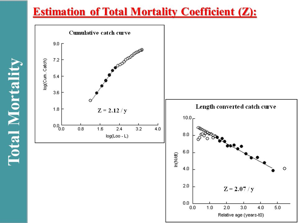 Total Mortality Estimation of Total Mortality Coefficient (Z):