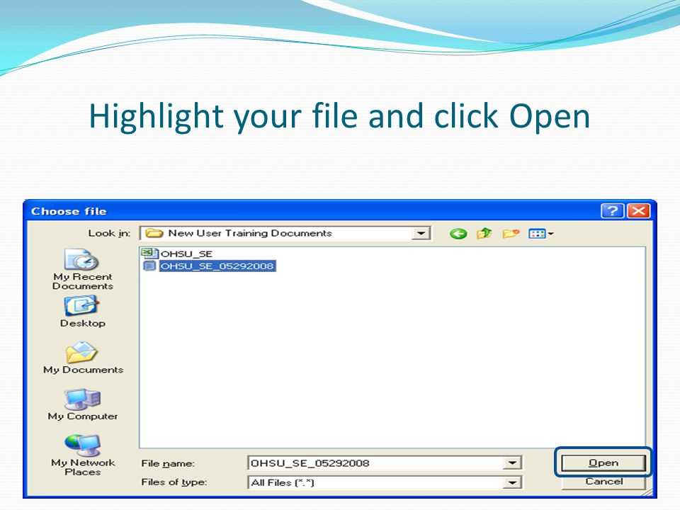 Highlight your file and click Open