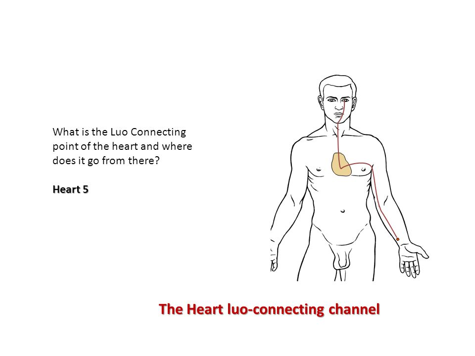What is the Luo Connecting point of the heart and where does it go from there.