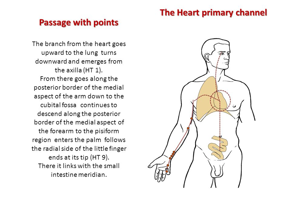 Passage with points The branch from the heart goes upward to the lung turns downward and emerges from the axilla (HT 1).
