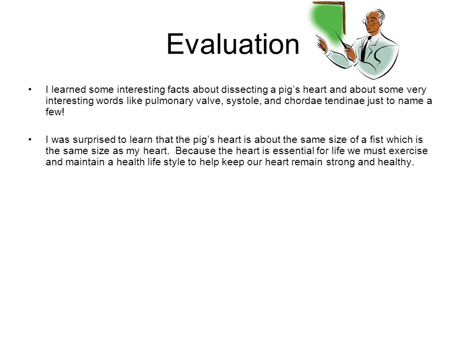 Evaluation I learned some interesting facts about dissecting a pig's heart and about some very interesting words like pulmonary valve, systole, and chordae tendinae just to name a few.