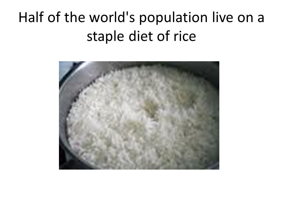 Half of the world s population live on a staple diet of rice
