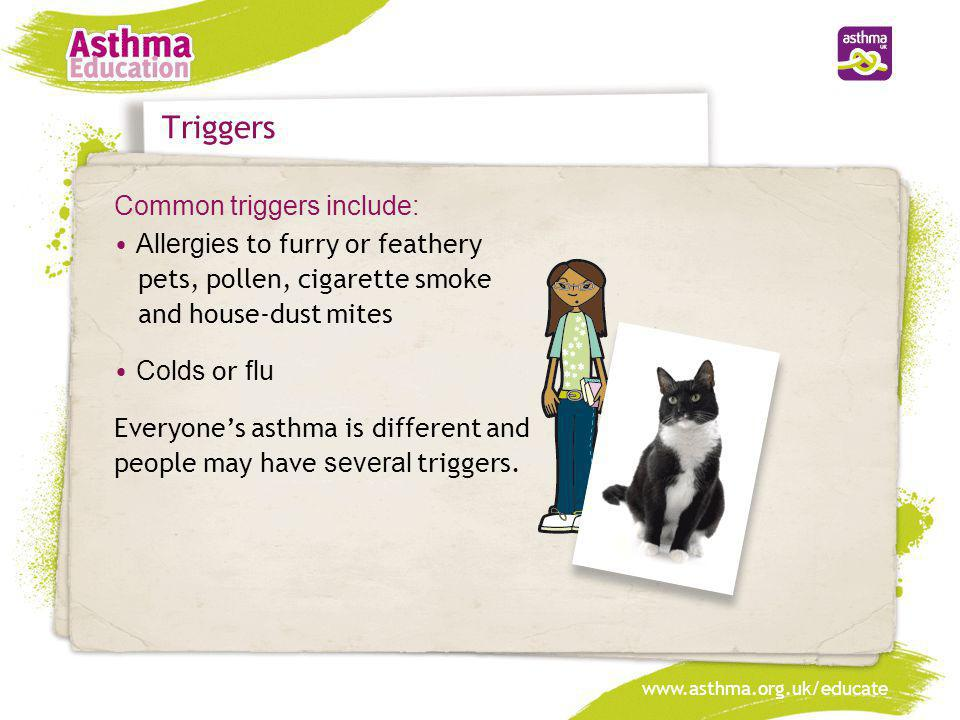 Triggers Common triggers include: Allergies to furry or feathery pets, pollen, cigarette smoke and house-dust mites Colds or flu Everyone's asthma is