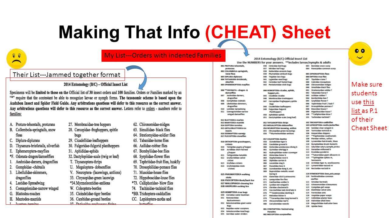 Making That Info (CHEAT) Sheet Their List---Jammed together format My List---Orders with indented Families Make sure students use this list as P.1 of
