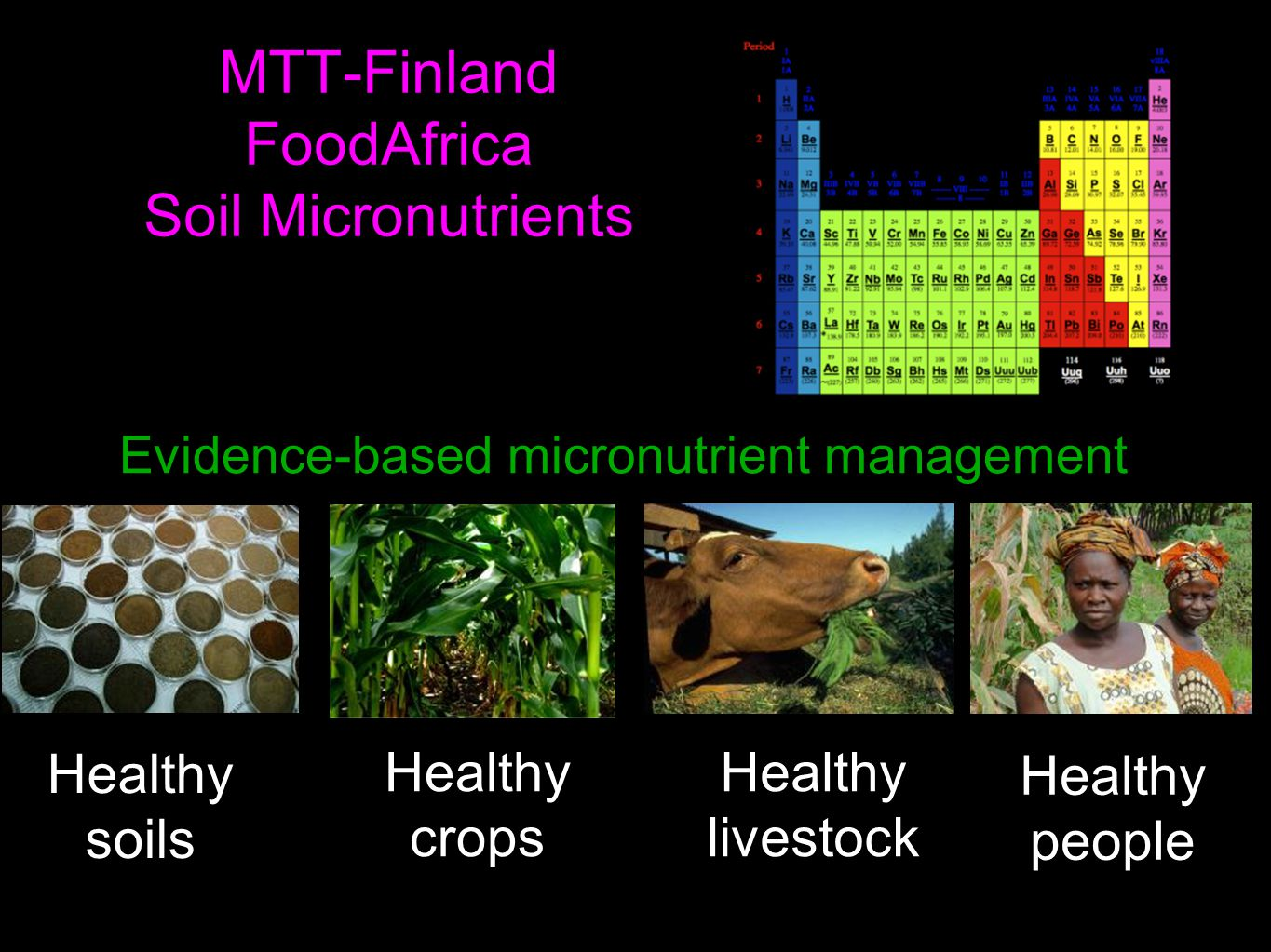 MTT-Finland FoodAfrica Soil Micronutrients Healthy soils Healthy crops Healthy livestock Healthy people Evidence-based micronutrient management