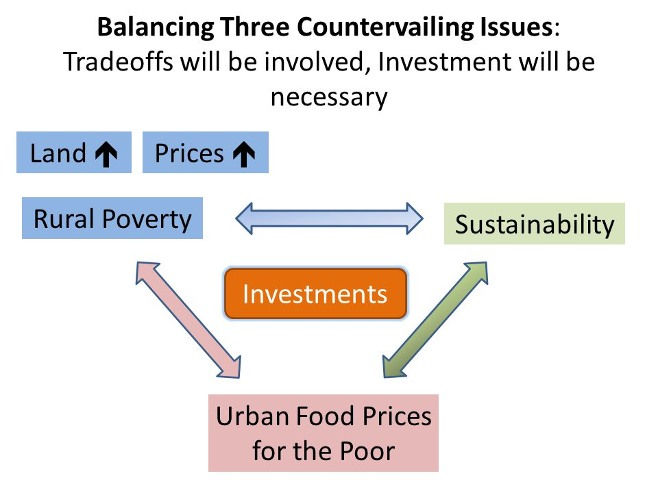 Balancing Three Countervailing Issues: Tradeoffs will be involved, Investment will be necessary Rural Poverty Sustainability Urban Food Prices for the Poor Investments Land  Prices 