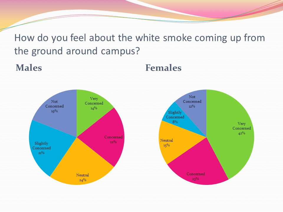 How do you feel about the white smoke coming up from the ground around campus? Males Females