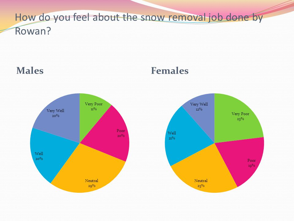 How do you feel about the snow removal job done by Rowan? Males Females