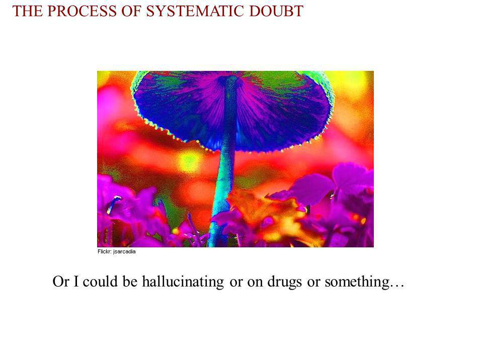 THE PROCESS OF SYSTEMATIC DOUBT Or I could be hallucinating or on drugs or something…