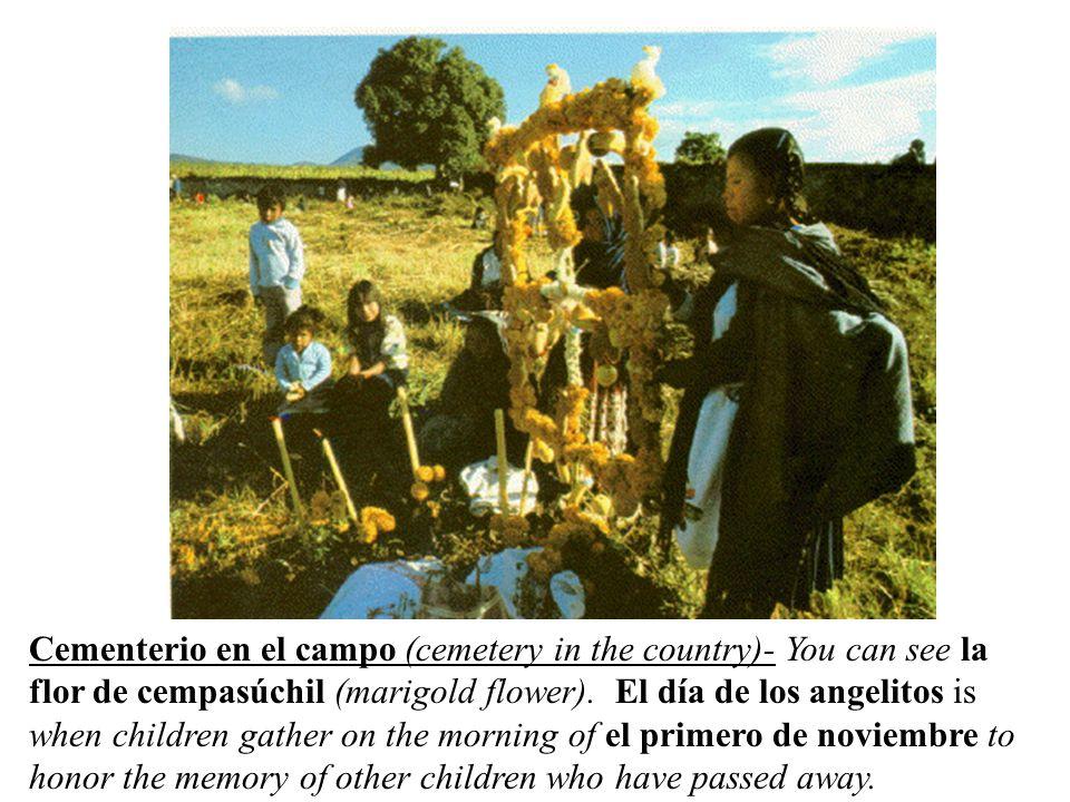 Cementerio en el campo (cemetery in the country)- You can see la flor de cempasúchil (marigold flower).