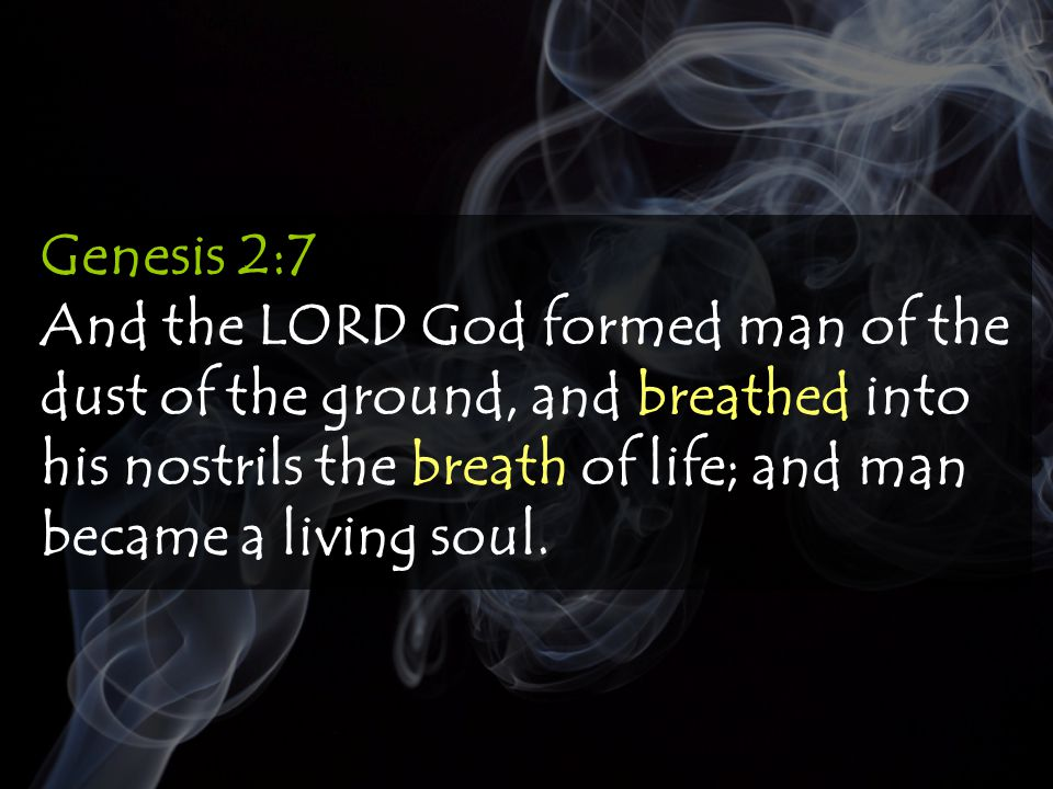 Job 12:10 In whose hand is the soul of every living thing, and the breath of all mankind.