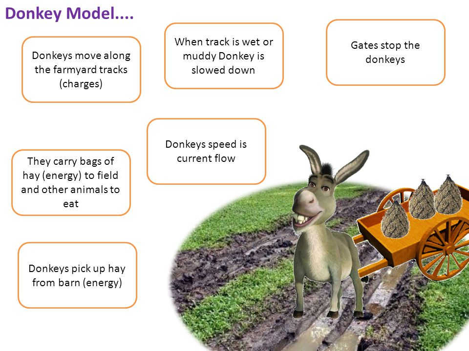 Donkey Model.... Donkeys move along the farmyard tracks (charges) Gates stop the donkeys They carry bags of hay (energy) to field and other animals to