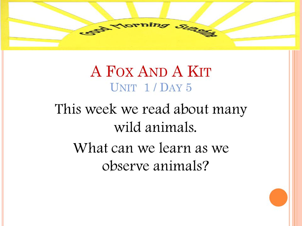 A F OX A ND A K IT U NIT 1 / D AY 5 This week we read about many wild animals.