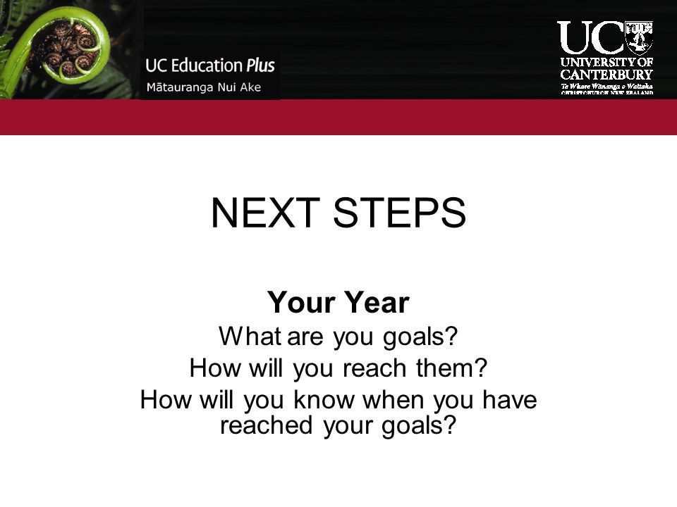 NEXT STEPS Your Year What are you goals? How will you reach them? How will you know when you have reached your goals?