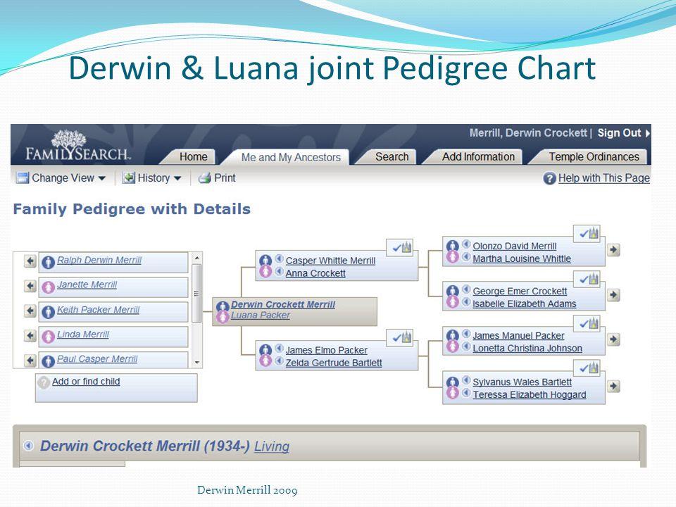 Derwin & Luana joint Pedigree Chart Derwin Merrill 2009
