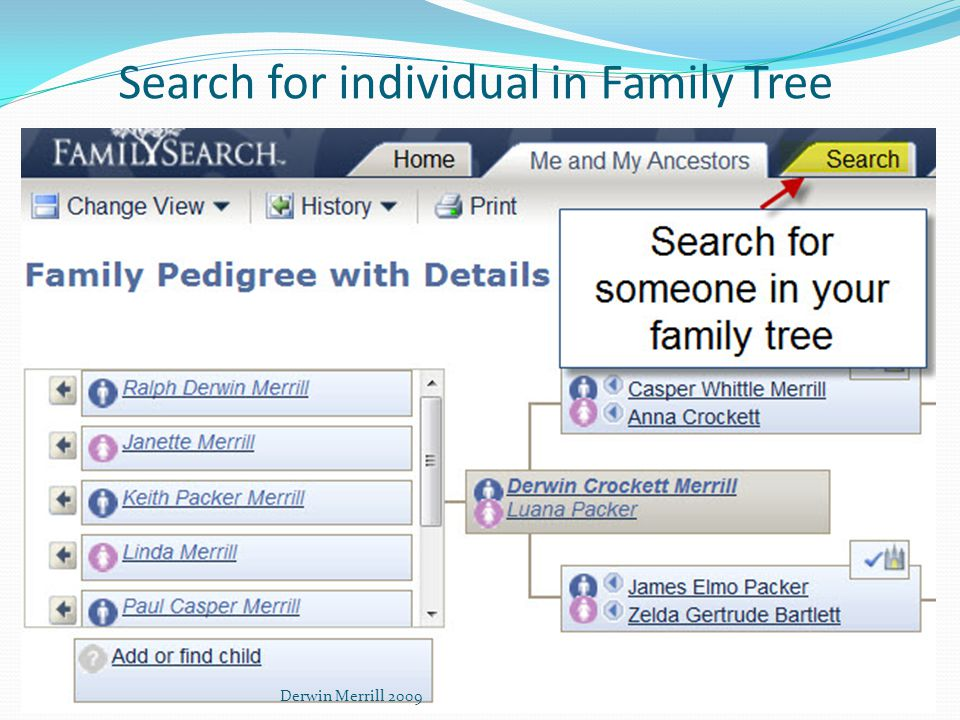 Search for individual in Family Tree Derwin Merrill 2009