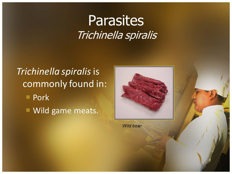 Parasites Trichinella spiralis Trichinella spiralis is commonly found in:  Pork  Wild game meats.