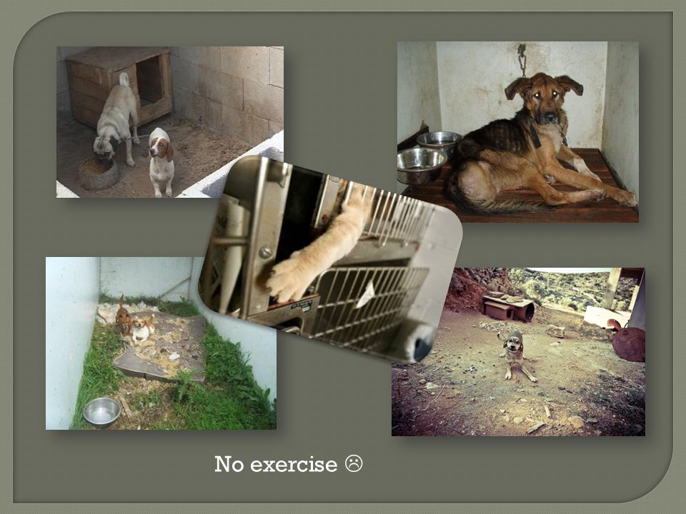 No exercise 