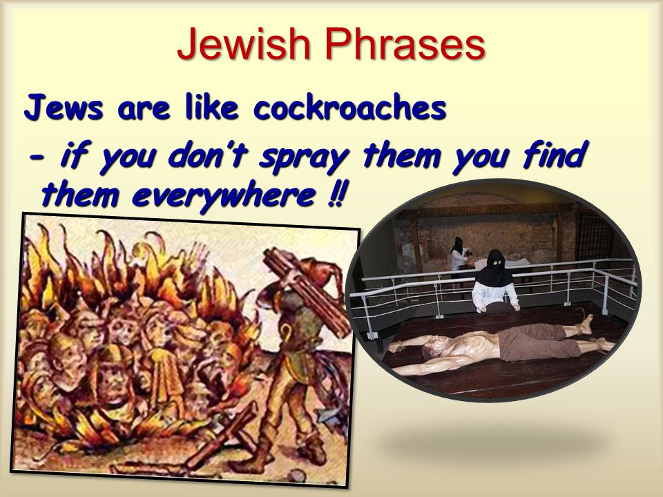 Jewish Phrases Jews are like cockroaches - if you don't spray them you find them everywhere !!