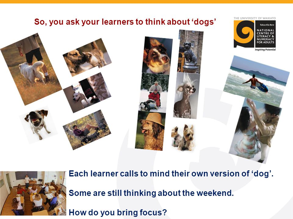 So, you ask your learners to think about 'dogs' Each learner calls to mind their own version of 'dog'. Some are still thinking about the weekend. How