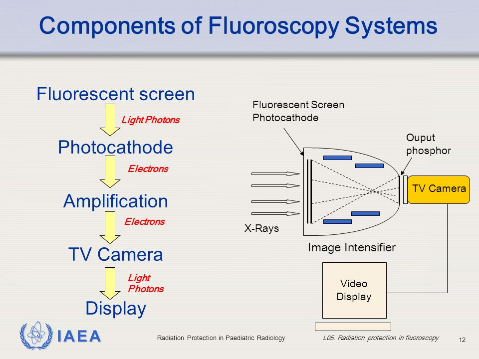 IAEA Radiation Protection in Paediatric Radiology L05. Radiation protection in fluoroscopy 12 Components of Fluoroscopy Systems Fluorescent screen Pho