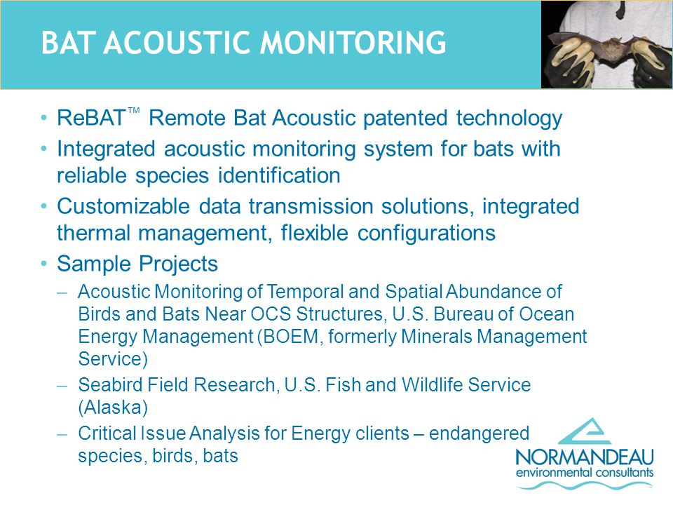 BAT ACOUSTIC MONITORING ReBAT ™ Remote Bat Acoustic patented technology Integrated acoustic monitoring system for bats with reliable species identification Customizable data transmission solutions, integrated thermal management, flexible configurations Sample Projects –Acoustic Monitoring of Temporal and Spatial Abundance of Birds and Bats Near OCS Structures, U.S.