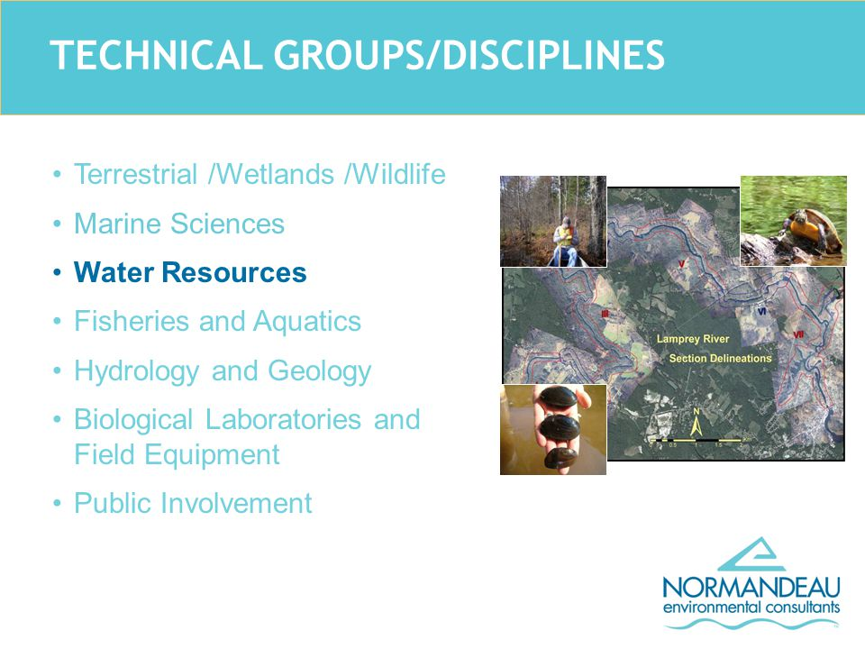 TECHNICAL GROUPS/DISCIPLINES Terrestrial /Wetlands /Wildlife Marine Sciences Water Resources Fisheries and Aquatics Hydrology and Geology Biological Laboratories and Field Equipment Public Involvement