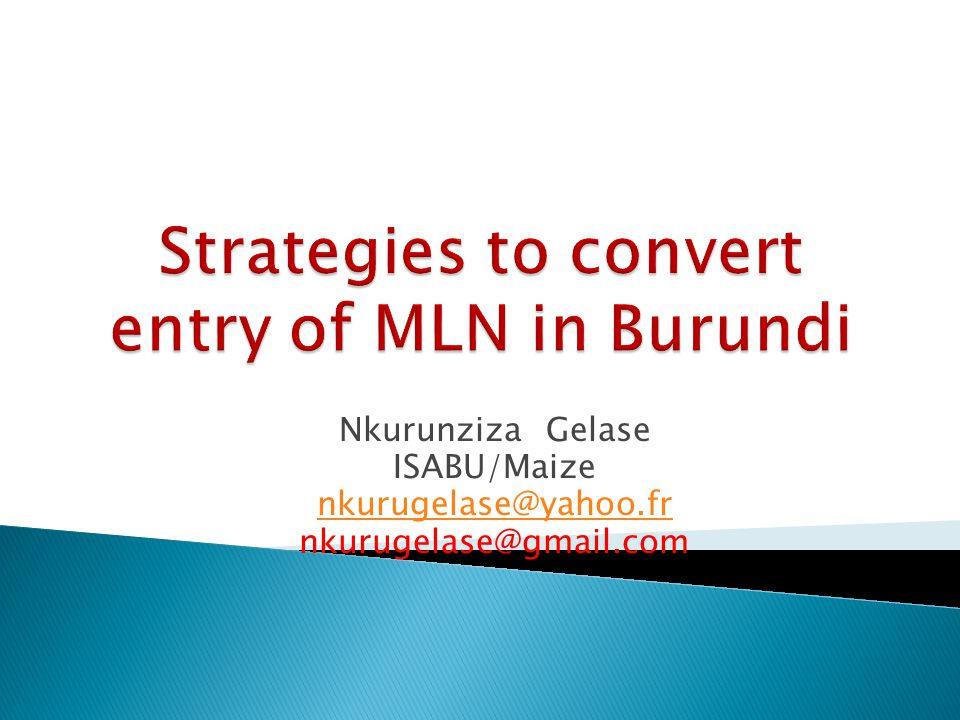 Nkurunziza Gelase ISABU/Maize nkurugelase@yahoo.fr nkurugelase@gmail.com