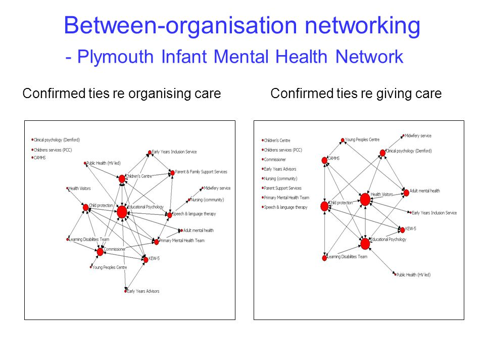 - Plymouth Infant Mental Health Network Confirmed ties re organising careConfirmed ties re giving care Between-organisation networking