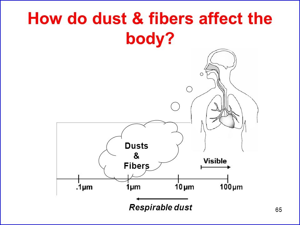 65 How do dust & fibers affect the body Respirable dust Dusts & Fibers