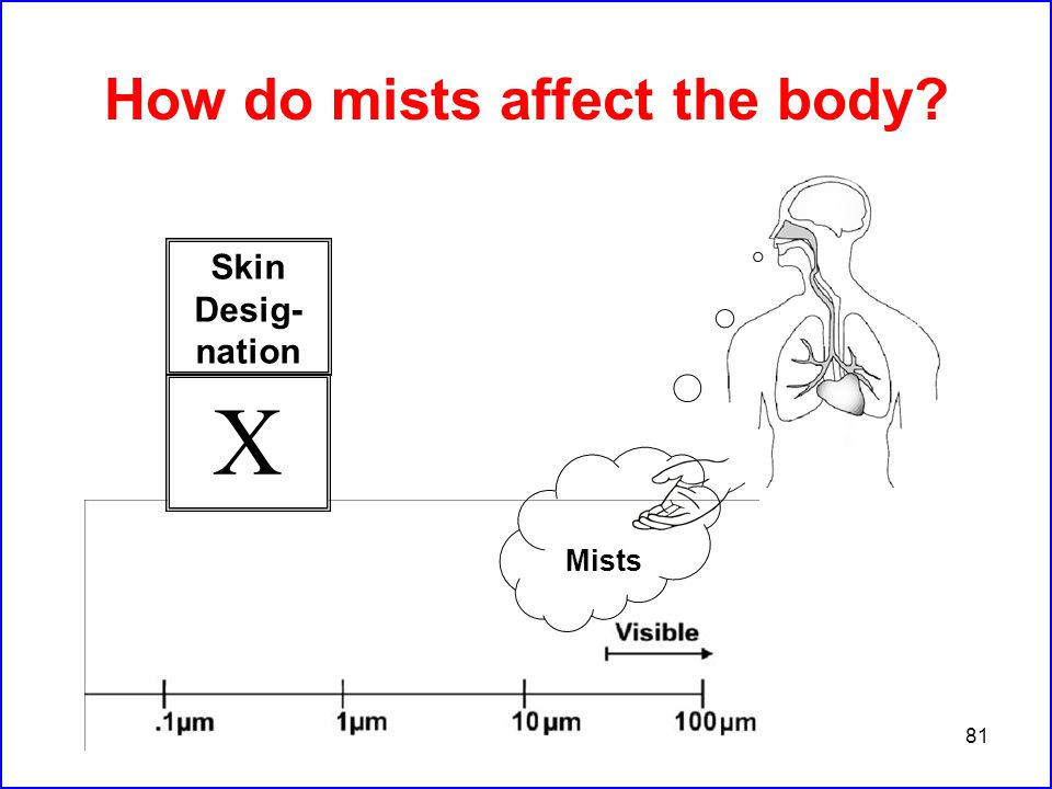 81 How do mists affect the body Mists Skin Desig- nation X