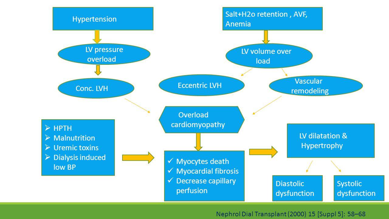 Hypertension Salt+H2o retention, AVF, Anemia LV pressure overload LV volume over load Vascular remodeling Eccentric LVH Conc. LVH Overload cardiomyopa