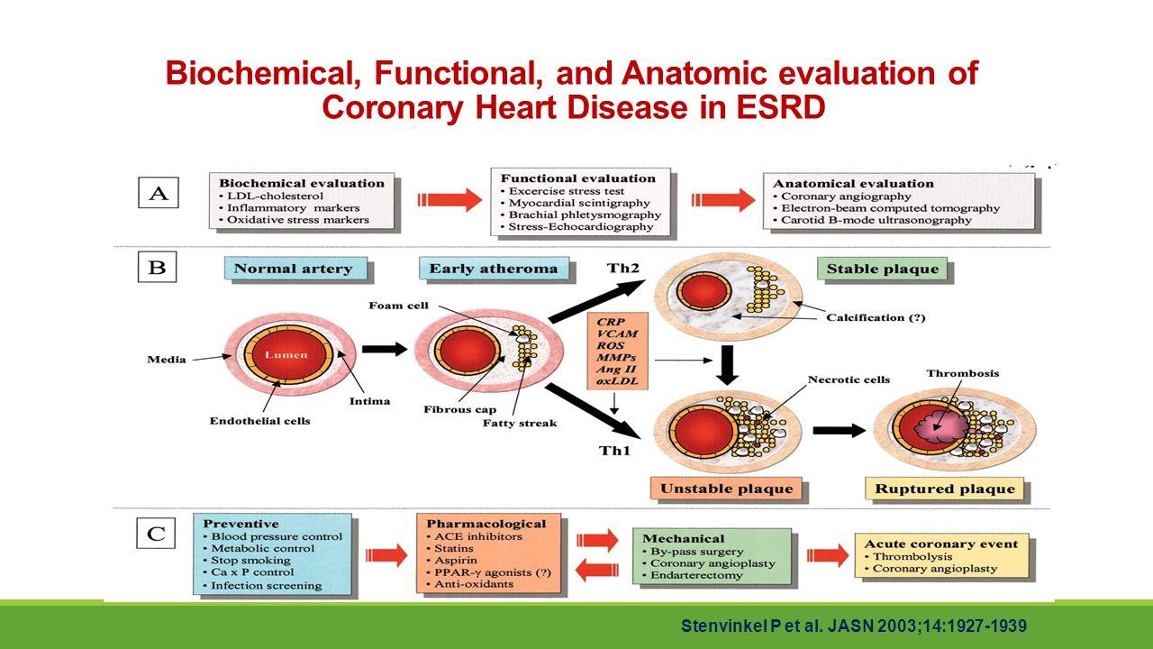 Biochemical, Functional, and Anatomic evaluation of Coronary Heart Disease in ESRD Stenvinkel P et al. JASN 2003;14:1927-1939