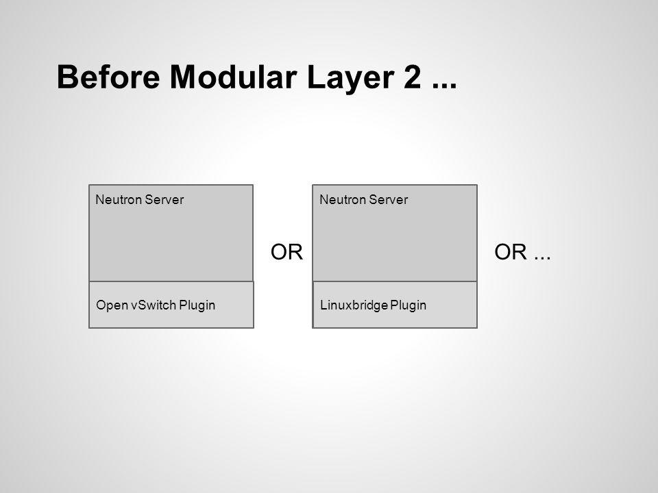 Before Modular Layer 2...Neutron Server Vendor X Plugin I want to write a Neutron Plugin.