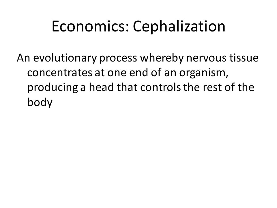 Economics: Cephalization An evolutionary process whereby nervous tissue concentrates at one end of an organism, producing a head that controls the rest of the body