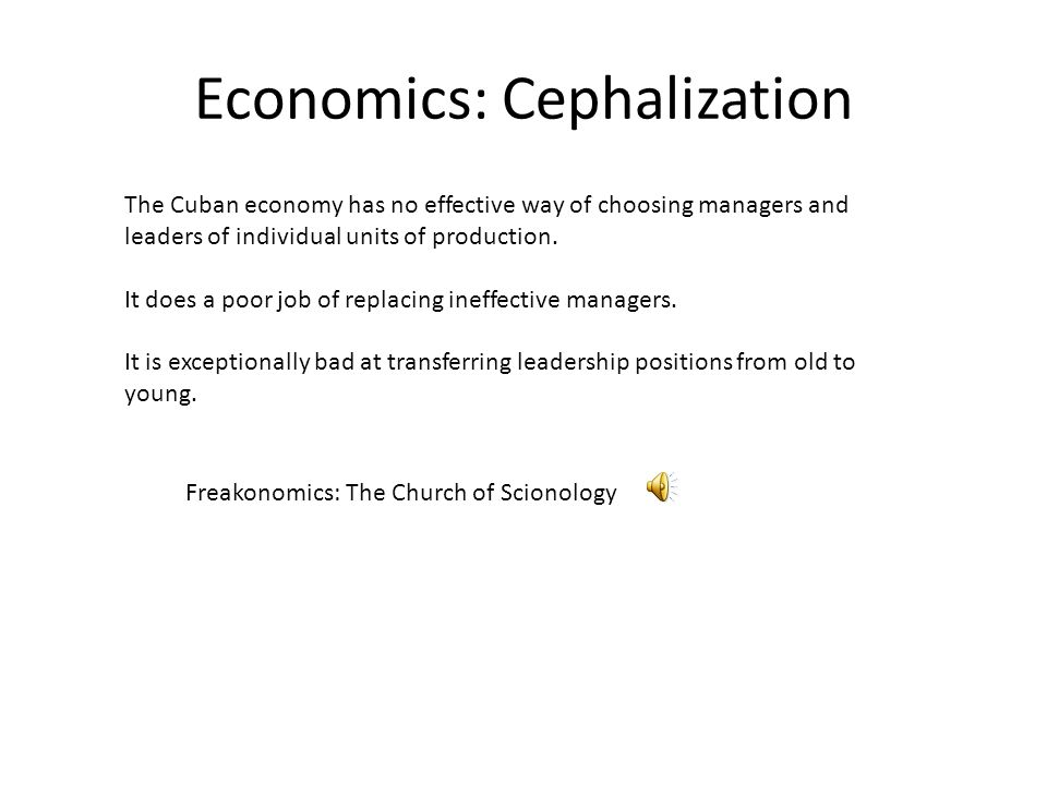 Economics: Cephalization The Cuban economy has no effective way of choosing managers and leaders of individual units of production.