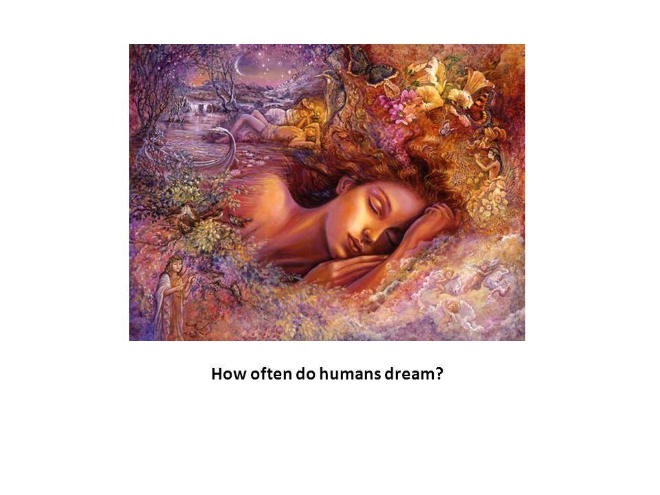 How often do humans dream?