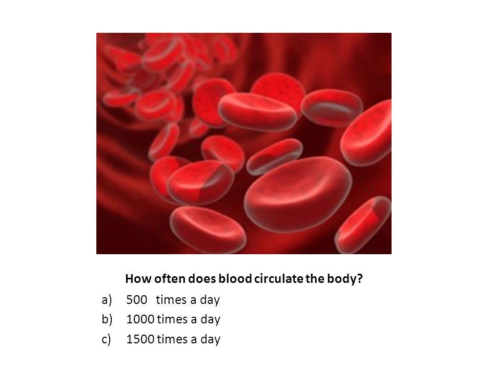 a)500 times a day b)1000 times a day c)1500 times a day