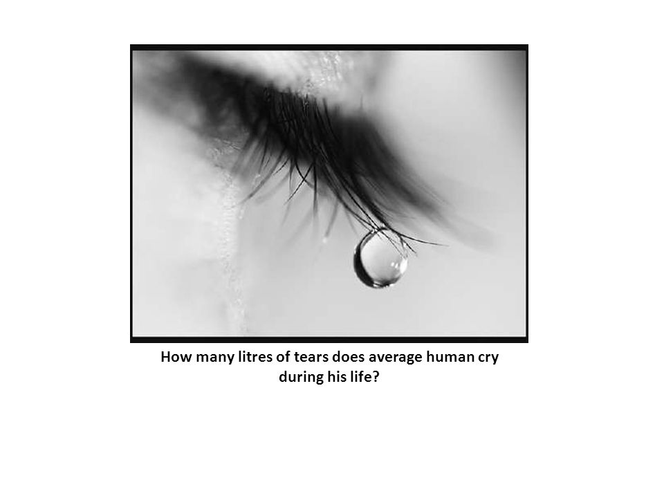 How many litres of tears does average human cry during his life?